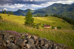 Mountain summer landscape with wooded green hills. Beautiful sunny scenery in clear weather.  stock images
