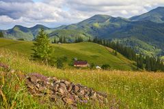 Mountain summer landscape with wooded green hills. Beautiful sunny scenery in clear weather.  royalty free stock photos