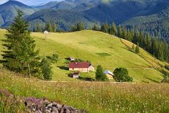 Mountain summer landscape with wooded green hills. Beautiful sunny scenery in clear weather.  stock photography