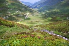 Mountain summer, swiss alps Stock Image