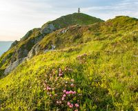 The mountain summit with blossom of rhododendrons on foreground stock images