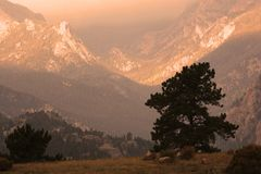 Mountain Sunset. Estes Park area of the Rocky Mountains at sunset Royalty Free Stock Images