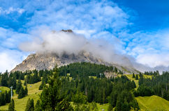 Mountain in Switzerland. In summer in beautiful nature Royalty Free Stock Photos