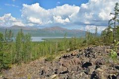 Mountain taiga on the Putorana plateau. Stock Image