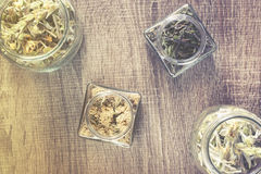Mountain tea with mint and yarrow herbs Stock Photography