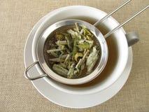 Mountain tea in tea strainer Stock Image