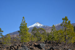 Mountain Teide in Tenerife, Canary Islands, Spain. Royalty Free Stock Photos