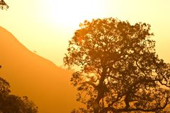 Mountain in Thailand beutiful scenic. And sunset Stock Image