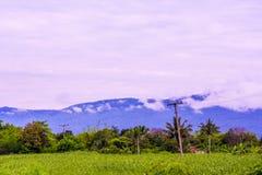 Mountain in Thailand. The blue mountain in Thailand Stock Photos