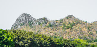Mountain. In thailand  landscape  rock sky highlands beautiful nature hill Royalty Free Stock Photos