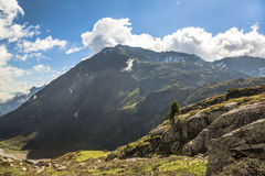 Mountain of Tirol, Austria, summer Royalty Free Stock Photos