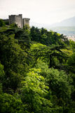 Mountain Top Castle Royalty Free Stock Photography