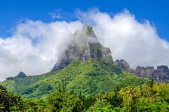 Mountain Top in the clouds. Tropical forest, French Polynesia royalty free stock photo