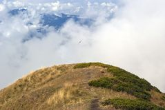 mountain top, clouds and flying bird royalty free stock photography