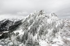 Mountain top covered with snow Stock Images