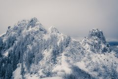 Mountain top covered with snow Stock Photography