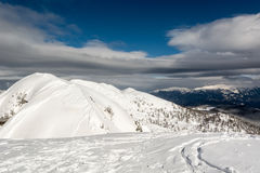 Mountain top with tracks. Ski tracks covering mountain top Royalty Free Stock Images