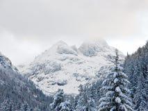 Mountain top under snow stock photo