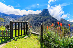 Mountain top view. Gate to the top of the mountain, cocora valley, colombia, mountain top view Stock Photography