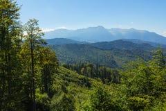 Mountain top Royalty Free Stock Photos