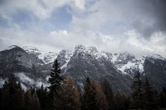 Mountain. Top view in the snow with fog, Italian Alps Royalty Free Stock Photography