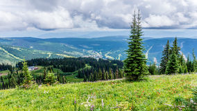 Mountain Top View of Sun Peaks Stock Photography