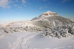 Mountain top in winter Royalty Free Stock Photography