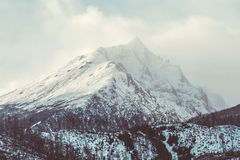 Mountain top in winter. High rocky mountain top on a sunny day in winter Stock Image