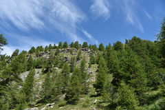 Mountain tops. Tops of Italian mountains in summer Royalty Free Stock Image