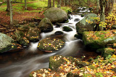 MOUNTAIN TORRENT. The water of a torrent flow between mountain rocks Royalty Free Stock Images