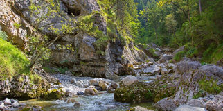 Mountain torrent in the bavarian alps Royalty Free Stock Photo