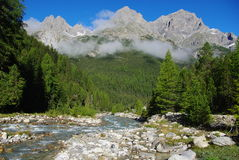 Mountain torrent, forest and mountains near S-Char. L, Switzerland, Europe Stock Photos