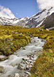 Mountain torrent near Mount Cook Stock Photography