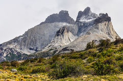 Mountain, Torres del Paine National Park, Chile. Cloudy mountain in the Torres del Paine National Park, Patagonia, Chile royalty free stock photo