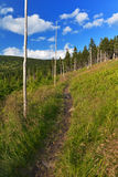 A mountain tourist path. A mountain tourist beaten track, path lined by navigation poles on a sunny day Royalty Free Stock Photos