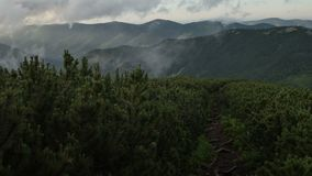 Mountain tourist trail along spruce background of a rapidly running clouds. Smooth movement.  stock video footage
