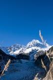 Mountain. Towering snow-capped mountains.Millennium glacier Royalty Free Stock Photos