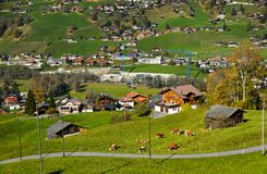 Mountain town in Grindelwald, Switzerland royalty free stock image