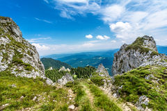 Mountain track in Romania Stock Image