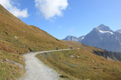 Mountain track at Swiss alps Stock Photography