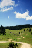 Mountain trail. Serpentine in Apuseni mountains in the summer time Royalty Free Stock Photo