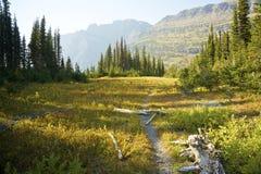 Mountain Trail. View along a trail near Hidden Lake, Glacier National Park, Montana, United States Royalty Free Stock Photos