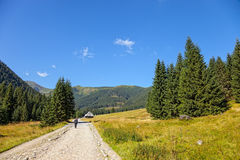 On a mountain trail Royalty Free Stock Images