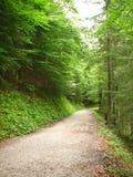 Mountain Trail. Through the Bavarian Alps royalty free stock image