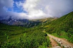 Mountain trail. Beautiful trail in Tatra Mountains Royalty Free Stock Photos