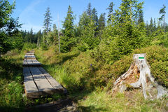 Mountain trail boardwalk Stock Images