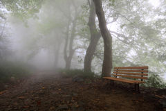 Mountain trail and chair in fog Stock Images