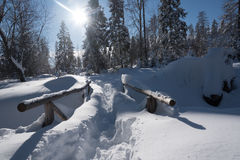Mountain trail covered with snow and large snowdrifts Stock Photography