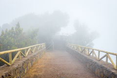 Mountain trail in the foggy day Royalty Free Stock Image