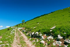 Mountain trail on green slope. Mountain trail on green  slope under blue sky. French Apls,  Haute-Savoie Royalty Free Stock Photography